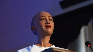 Photo of Sophia Robot Interesting facts about Humanoid